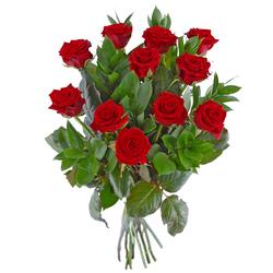 11 róż – Krzyk piękna