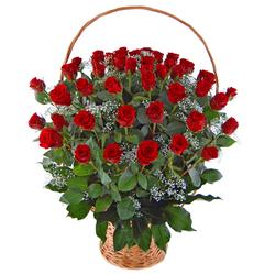 50 róż w koszu